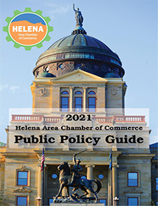 Public Policy Guide Cover
